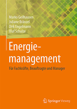 Bränzel, Juliane - Energiemanagement, ebook