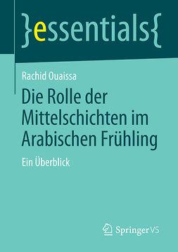 Ouaissa, Rachid - Die Rolle der Mittelschichten im Arabischen Frühling, ebook