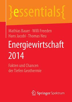 Bauer, Mathias - Energiewirtschaft 2014, ebook
