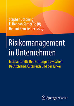 Göğüş, E. Handan Sümer - Risikomanagement in Unternehmen, ebook
