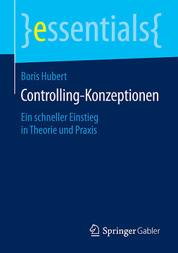 Hubert, Boris - Controlling-Konzeptionen, ebook