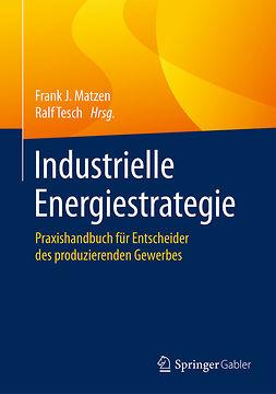 Matzen, Frank J. - Industrielle Energiestrategie, ebook