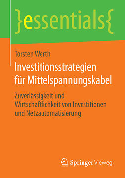 Werth, Torsten - Investitionsstrategien für Mittelspannungskabel, ebook