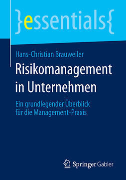 Brauweiler, Hans-Christian - Risikomanagement in Unternehmen, ebook