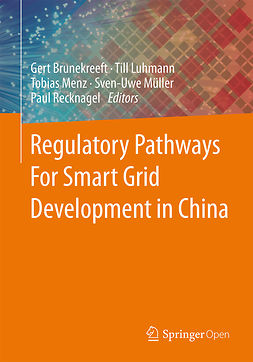 Brunekreeft, Gert - Regulatory Pathways For Smart Grid Development in China, ebook