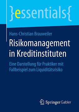 Brauweiler, Hans-Christian - Risikomanagement in Kreditinstituten, e-bok
