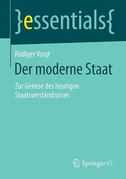 Voigt, Rüdiger - Der moderne Staat, ebook