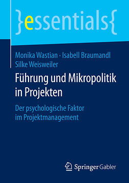 Braumandl, Isabell - Führung und Mikropolitik in Projekten, ebook