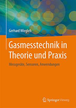 Wiegleb, Gerhard - Gasmesstechnik in Theorie und Praxis, ebook