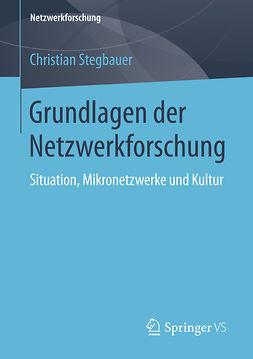 Stegbauer, Christian - Grundlagen der Netzwerkforschung, ebook
