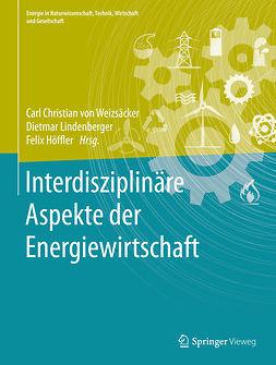 Höffler, Felix - Interdisziplinäre Aspekte der Energiewirtschaft, ebook