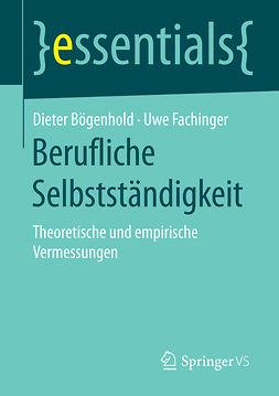 Bögenhold, Dieter - Berufliche Selbstständigkeit, ebook