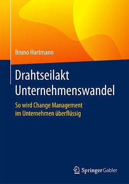 Hartmann, Bruno - Drahtseilakt Unternehmenswandel, ebook