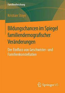 Stoye, Kristian - Bildungschancen im Spiegel familiendemografischer Veränderungen, ebook