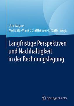 Schaffhauser-Linzatti, Michaela-Maria - Langfristige Perspektiven und Nachhaltigkeit in der Rechnungslegung, ebook