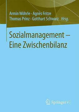 Fritze, Agnès - Sozialmanagement – Eine Zwischenbilanz, e-kirja