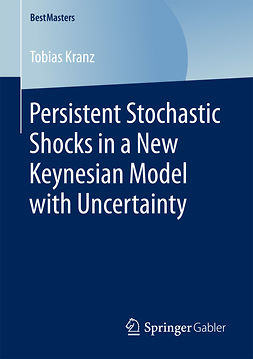 Kranz, Tobias - Persistent Stochastic Shocks in a New Keynesian Model with Uncertainty, ebook