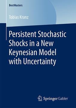 Kranz, Tobias - Persistent Stochastic Shocks in a New Keynesian Model with Uncertainty, ebook