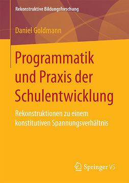 Goldmann, Daniel - Programmatik und Praxis der Schulentwicklung, ebook