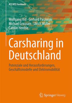 Grausam, Michael - Carsharing in Deutschland, ebook