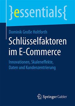 Holtforth, Dominik Große - Schlüsselfaktoren im E-Commerce, ebook