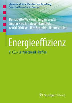 Bruder, Jürgen - Energieeffizienz, ebook