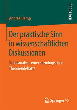 Hamp, Andrea - Der praktische Sinn in wissenschaftlichen Diskussionen, ebook