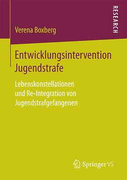 Boxberg, Verena - Entwicklungsintervention Jugendstrafe, ebook