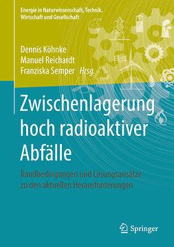 Köhnke, Dennis - Zwischenlagerung hoch radioaktiver Abfälle, ebook