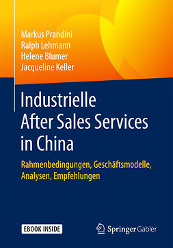 Blumer, Helene - Industrielle After Sales Services in China, e-bok