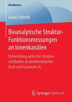Schmidt, David - Bioanalytische Struktur-Funktionsmessungen an Ionenkanälen, ebook