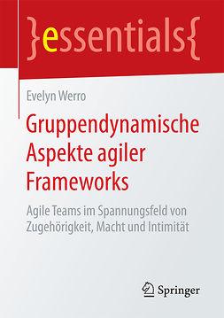 Werro, Evelyn - Gruppendynamische Aspekte agiler Frameworks, ebook