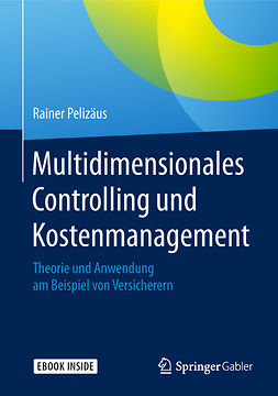 Pelizäus, Rainer - Multidimensionales Controlling und Kostenmanagement, ebook