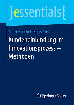 Knöchel, Meike - Kundeneinbindung im Innovationsprozess – Methoden, e-kirja