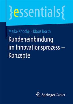 Knöchel, Meike - Kundeneinbindung im Innovationsprozess – Konzepte, e-kirja