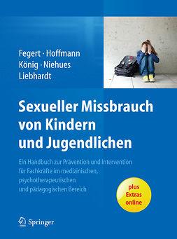 Fegert, Jörg M. - Sexueller Missbrauch von Kindern und Jugendlichen, ebook