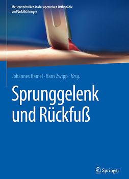 Hamel, Johannes - Sprunggelenk und Rückfuß, ebook