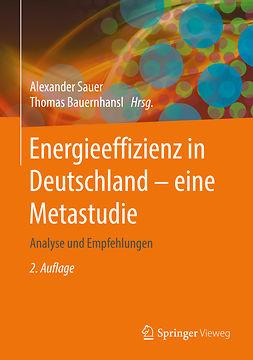 Bauernhansl, Thomas - Energieeffizienz in Deutschland - eine Metastudie, ebook