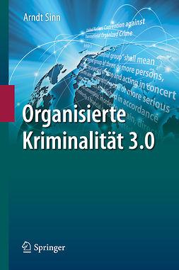 Sinn, Arndt - Organisierte Kriminalität 3.0, ebook