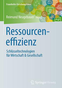 Neugebauer, Reimund - Ressourceneffizienz, ebook