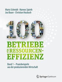 Bauer, Joa - 100 Betriebe für Ressourceneffizienz – Band 1, ebook