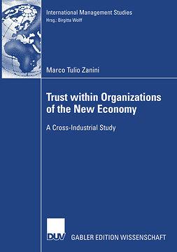 Zanini, Marco Tulio - Trust within Organizations of the New Economy, ebook