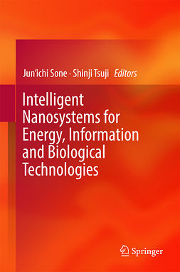Sone, Jun'ichi - Intelligent Nanosystems for Energy, Information and Biological Technologies, ebook
