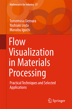 Iguchi, Manabu - Flow Visualization in Materials Processing, e-bok