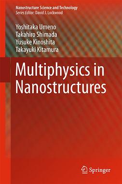 Kinoshita, Yusuke - Multiphysics in Nanostructures, ebook