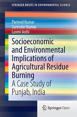 Joshi, Laxmi - Socioeconomic and Environmental Implications of Agricultural Residue Burning, ebook