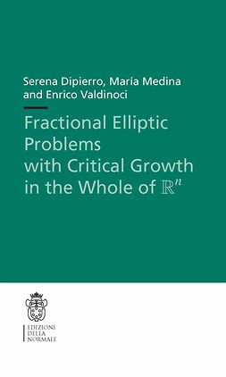 Dipierro, Serena - Fractional Elliptic Problems with Critical Growth in the Whole of ℝ<Superscript>n</Superscript>, ebook