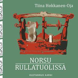 Hokkanen-Oja, Tiina - Norsu rullatuolissa, e-bok