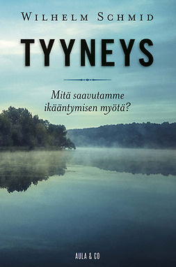 Schmid, Wilhelm - Tyyneys, ebook