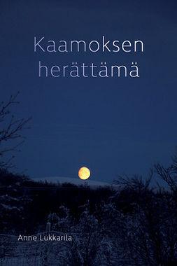 Lukkarila, Anne - Kaamoksen herättämä, ebook